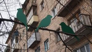 В Петрозаводске на дереве поселились зеленые птицы!