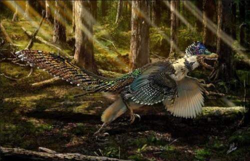Ученые нашли в Китае двухметрового пернатого динозавра с крыльями