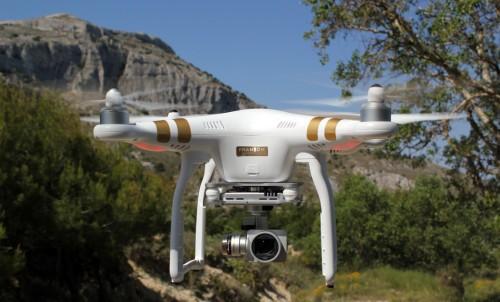Ученые: Лебеди помогут в разработке современных камер для беспилотников