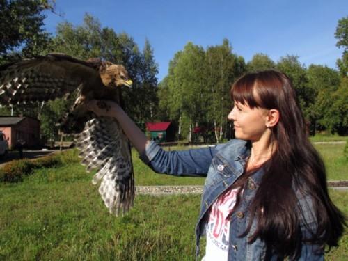 В Кузбассе открылся первый центр реабилитации диких птиц
