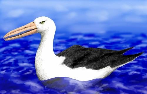 Ученые нашли в Антарктиде останки птицы, обитавшей на земле 50 млн лет назад
