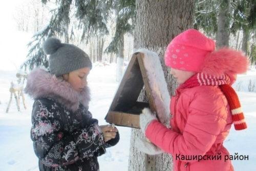 Пятьдесят один муниципалитет Подмосковья поможет птицам пережить зиму