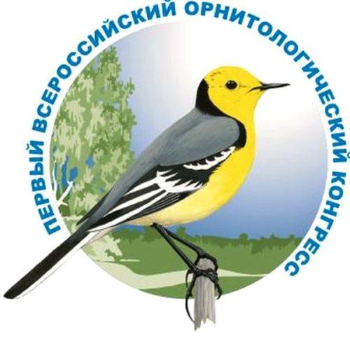 В ТвГУ собрались ученые-орнитологи из 12 стран