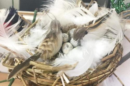 «День птиц» прошел в Буйнакском районе