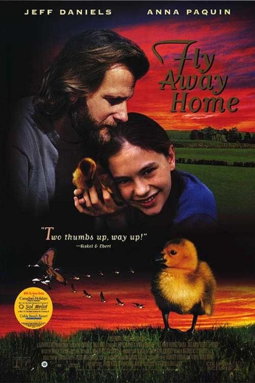 постер фильма  «Летите домой» / Fly Away Home