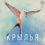Во что поиграть: Настольная игра «Крылья» (Wingspan)