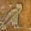 Птицы Древнего Египта в знаках и в жизни