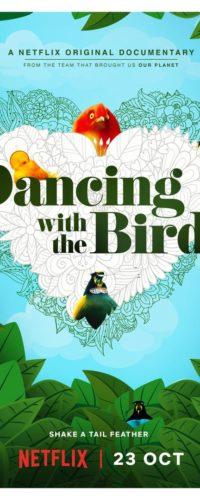 Что посмотреть: Танцы с птицами