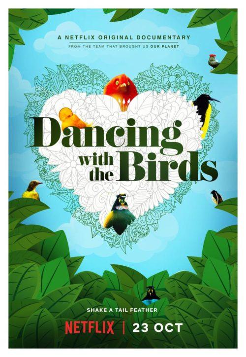 постер документального фильма Танцы с птицами