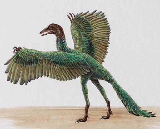 Создать настоящий «Парк Юрского периода» можно с помощью ДНК птиц